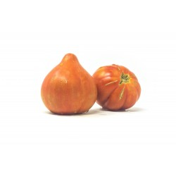 Tomate valenciano (500g)