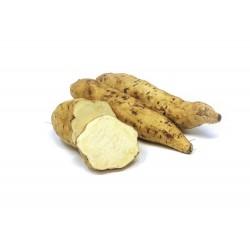 Boniato blanco (kilo)