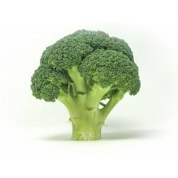 Brócoli (500g)